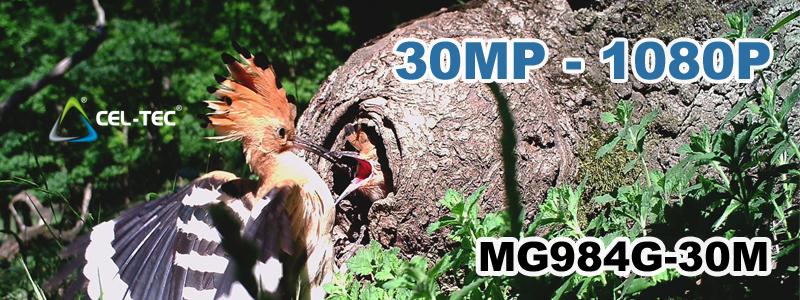 30MP_1080P.jpg