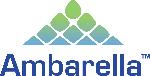 Logo Ambarella  - USA chipsets manufacturer